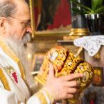 Посета Епископа Теодосија Парохији у Луцерну (15)