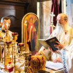 Посета Епископа Теодосија Парохији у Луцерну (31)
