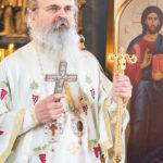Посета Епископа Теодосија Парохији у Луцерну (38)