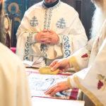 Посета Епископа Теодосија Парохији у Луцерну (41)