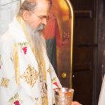 Посета Епископа Теодосија Парохији у Луцерну (51)