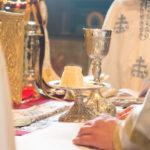 Посета Епископа Теодосија Парохији у Луцерну (54)