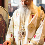 Посета Епископа Теодосија Парохији у Луцерну (56)