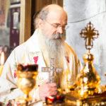 Посета Епископа Теодосија Парохији у Луцерну (57)