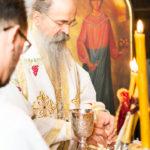 Посета Епископа Теодосија Парохији у Луцерну (59)