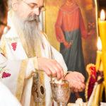 Посета Епископа Теодосија Парохији у Луцерну (60)