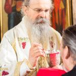 Посета Епископа Теодосија Парохији у Луцерну (74)