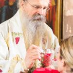 Посета Епископа Теодосија Парохији у Луцерну (75)