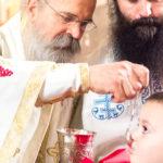 Посета Епископа Теодосија Парохији у Луцерну (76)