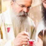 Посета Епископа Теодосија Парохији у Луцерну (77)