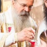Посета Епископа Теодосија Парохији у Луцерну (78)