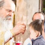 Посета Епископа Теодосија Парохији у Луцерну (79)