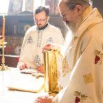 Посета Епископа Теодосија Парохији у Луцерну (91)