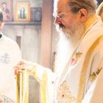 Посета Епископа Теодосија Парохији у Луцерну (92)