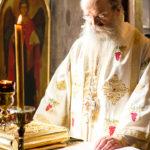 Посета Епископа Теодосија Парохији у Луцерну (93)