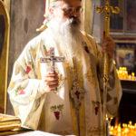 Посета Епископа Теодосија Парохији у Луцерну (95)